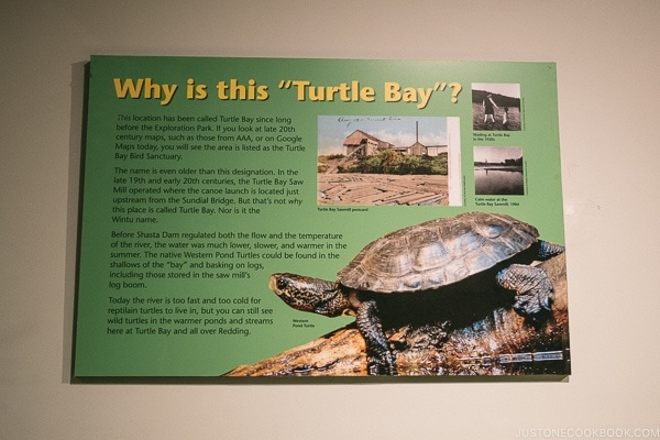 "Why is this ""Turtle Bay"" sign at Turtle Bay Exploration Park - Redding California Travel Guide 