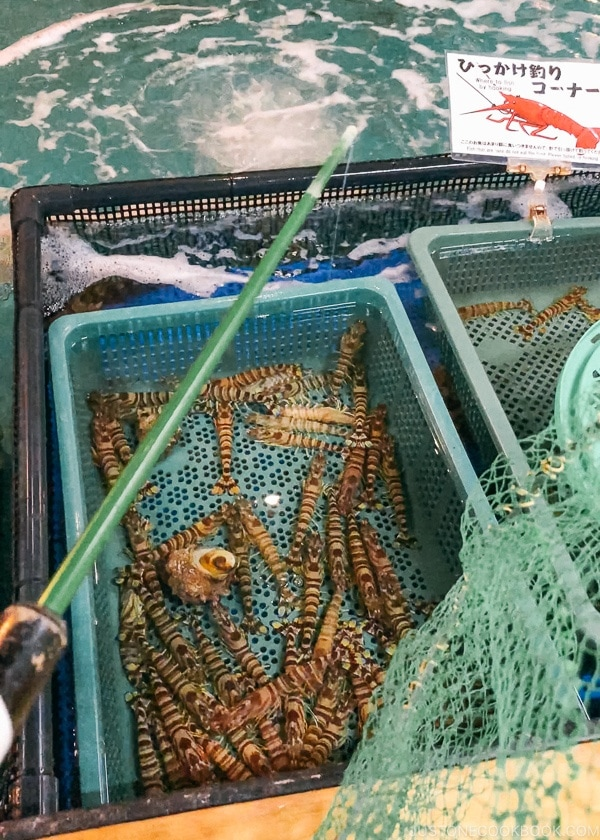 Live Shrimp tanks at Zauo Shinjuku - Shinjuku Travel Guide | justonecookbook.com