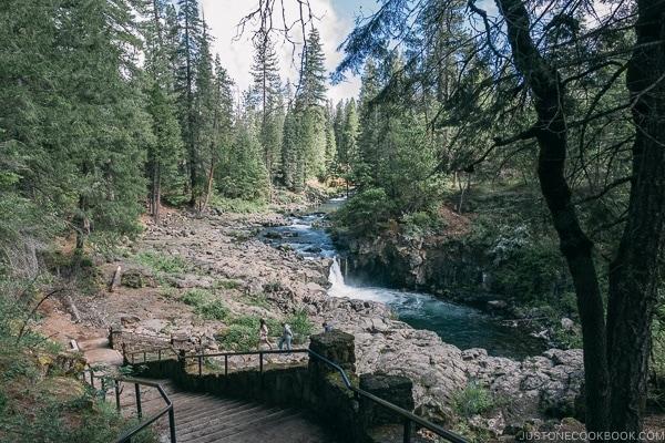 Lower Falls McCloud River - Mount Shasta Travel Guide | justonecookbook.com
