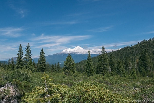 view of Mt. Shasta from Castle Lake area - Mount Shasta Travel Guide | justonecookbook.com