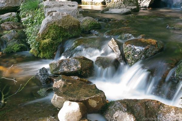 Headwaters Spring Mt. Shasta City Park - Mount Shasta Travel Guide | justonecookbook.com