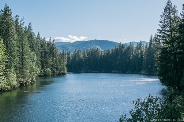 Lake Siskiyou - Mount Shasta Travel Guide | justonecookbook.com