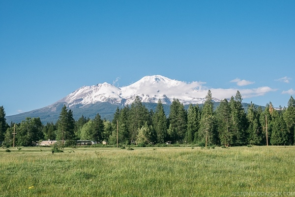 view of Mt. Shasta from Lake Siskiyou - Mount Shasta Travel Guide | justonecookbook.com