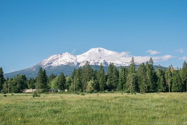 view of Mt. Shasta from Lake Siskiyou - Mount Shasta Travel Guide   justonecookbook.com