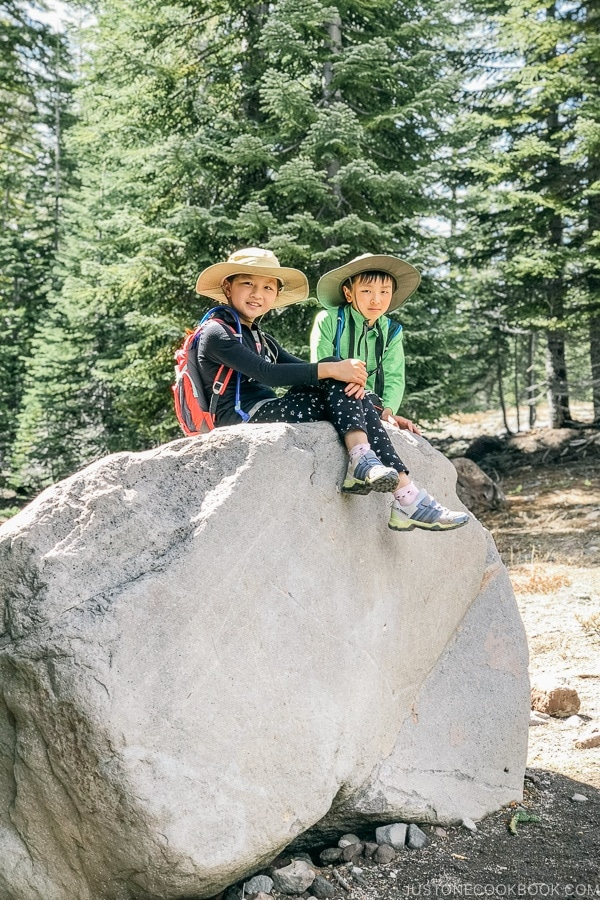 Just One Cookbook children sitting on a large rock off Bunny Flat Trail - Mount Shasta Travel Guide | justonecookbook.com