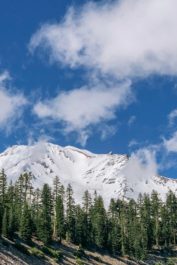 view of Mount Shasta from Bunny Flat Trail - Mount Shasta Travel Guide | justonecookbook.com