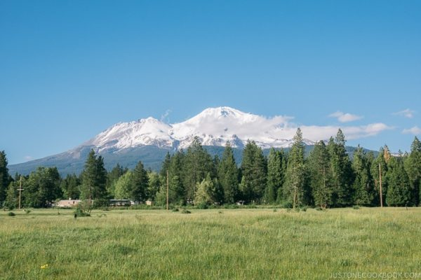 view of Mount Shasta - Mount Shasta Travel Guide | justonecookbook.com
