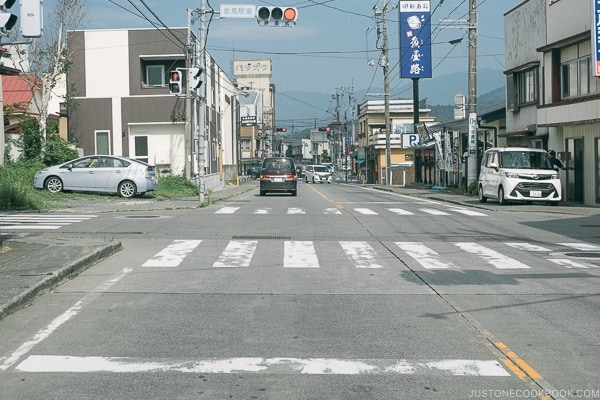 car stop line - Guide to Driving in Japan | www.justonecookbook.com