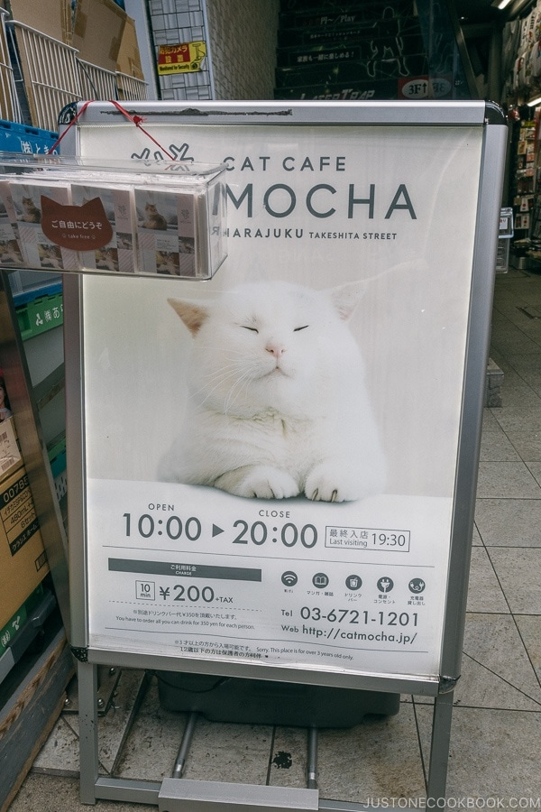 sign for Cat Cafe MOCHA - Harajuku Travel Guide | www.justonecookbook.com