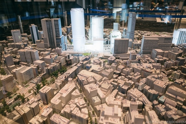 3D model of Shibuya at Shibuya Hikarie - Tokyo Shibuya Travel Guide | www.justonecookbook.com