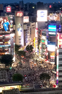 Shibuya Crossing at night - Tokyo Shibuya Travel Guide | www.justonecookbook.com