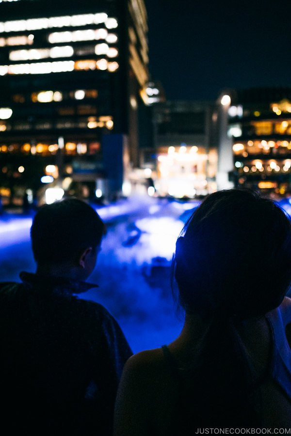 illumination at Starlight Garden Tokyo Midtown - Tokyo Roppongi Travel Guide | www.justonecookbook.com