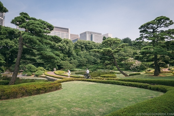 ninomaru garden - The East Gardens of the Imperial Palace Guide | www.justonecookbook.