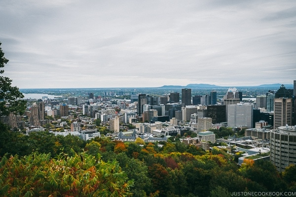 view of Montreal from Mount Royal Chalet - Montreal Travel Guide | www.justonecookbook.com