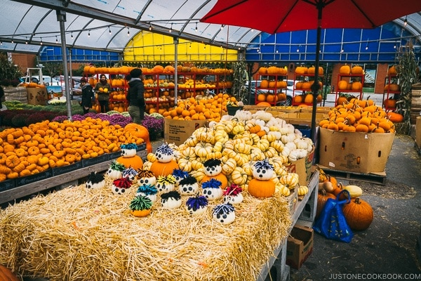 pumpkin stand at Atwater Market - Montreal Travel Guide   www.justonecookbook.com