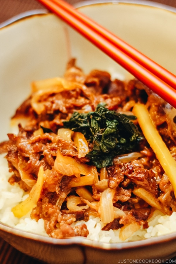 Beef Donburi with Shiso Garlic Soy Sauce | www.justonecookbook.com