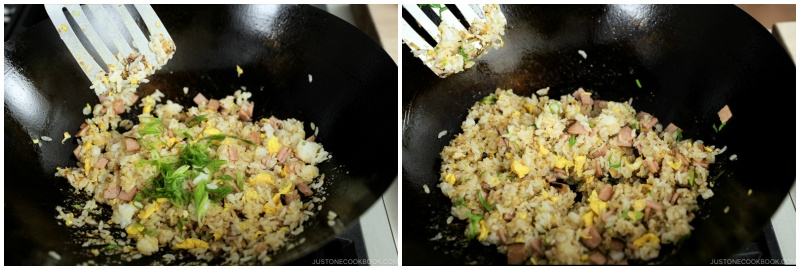 Easy Fried Rice 12