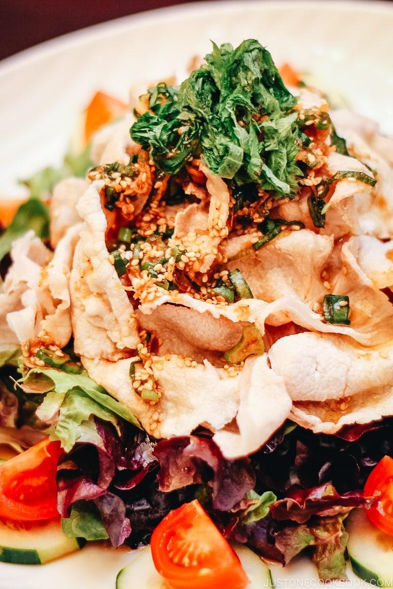 Pork Shabu Salad with Ponzu Dressing   www.justonecookbook.com