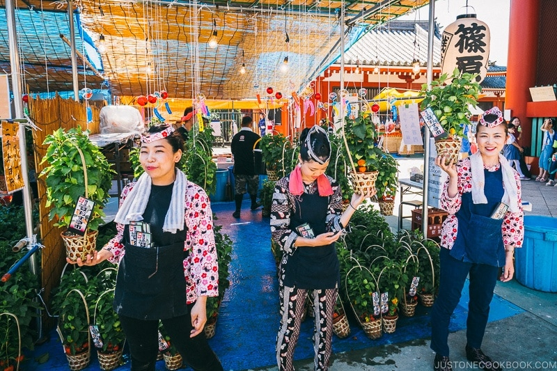 vendors selling Hozuki Flower - Tokyo Asakusa Travel Guide | www.justonecookbook.com