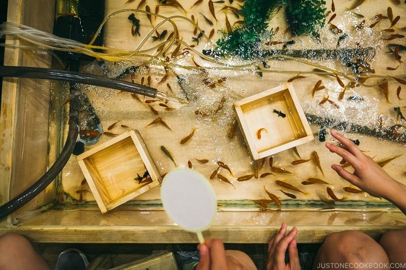 Asakusa Kagetudo gold fish game shop - Tokyo Asakusa Travel Guide | www.justonecookbook.com