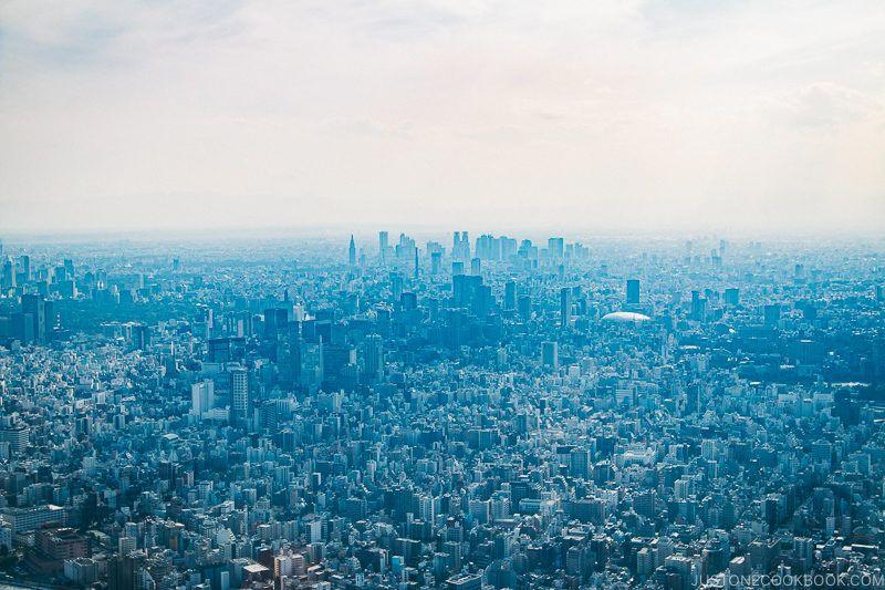 view towards Shinjuku from Tokyo Skytree - Tokyo Skytree Guide | www.justonecookbook.com