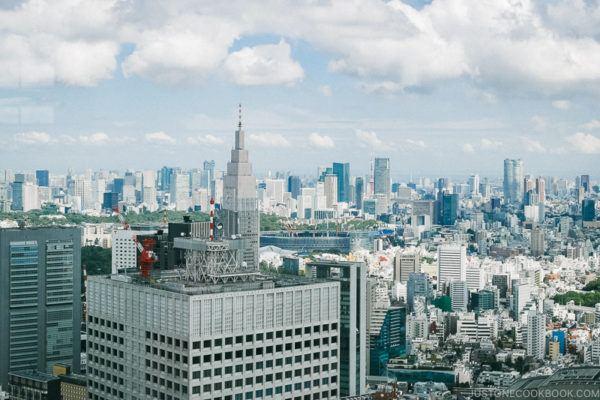 Tokyo Shinjuku | www.justonecookbook.com