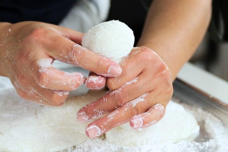 How to Make Mochi with a Stand Mixer (炊飯器とスタンドミキサーで作るお餅) | Easy Japanese Recipes at JustOneCookbook.com