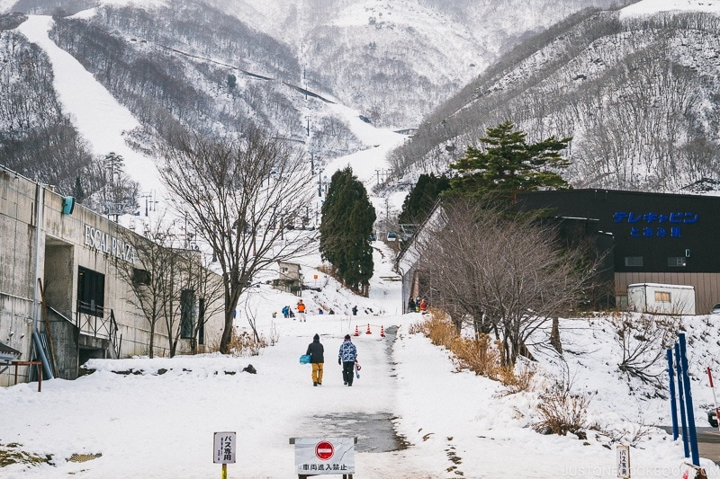 Hakuba Goryu Snow Resort - Hakuba Travel and Ski Guide | www.justonecookbook.com