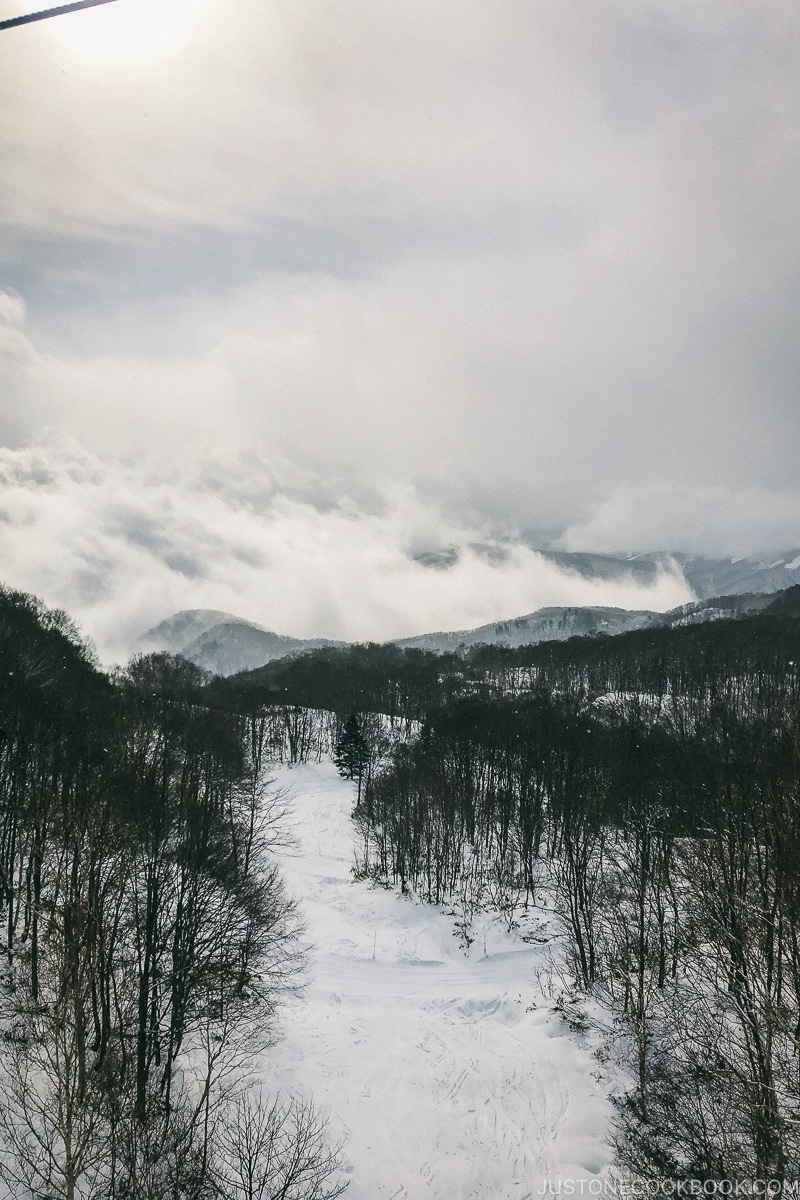 view of ski trail from the gondola at Tsugaike Ski Resort - Hakuba Travel and Ski Guide | www.justonecookbook.com