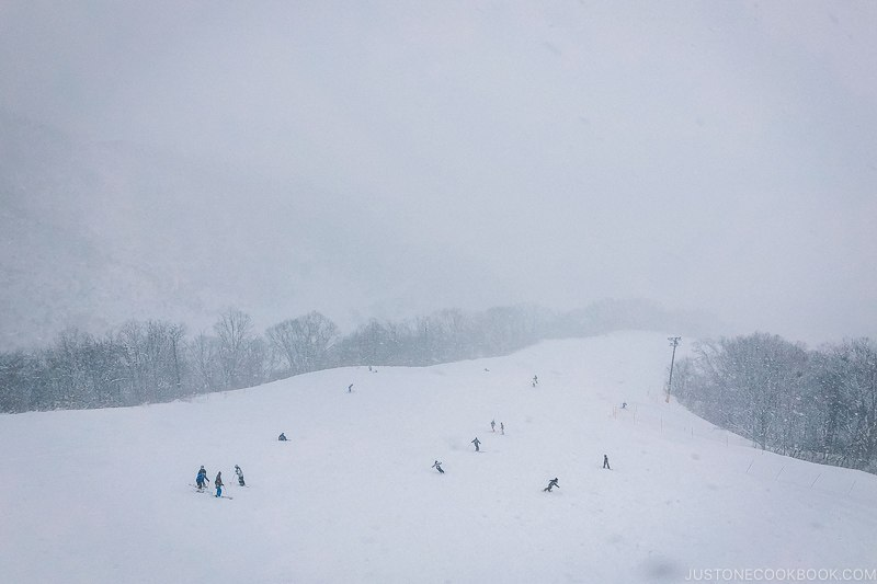 people skiing at Tsugaike Ski Resort - Hakuba Travel and Ski Guide | www.justonecookbook.com