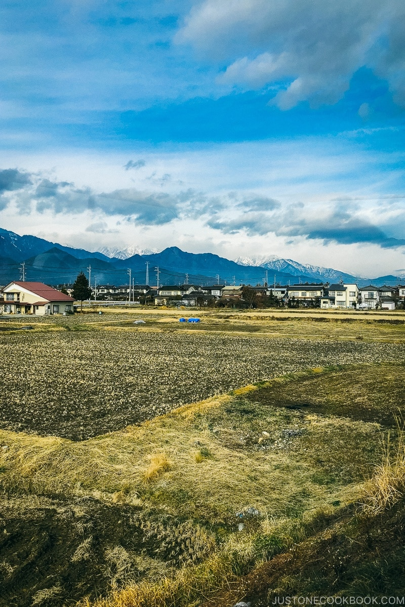 Ikeda city scenery with mountain in the background - Hakuba Travel and Ski Guide | www.justonecookbook.com