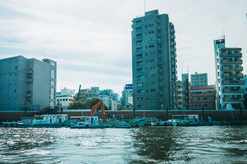 view of riverbank and building from Sumida River - Tokyo Cruise | www.justonecookbook.com