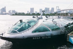 Tokyo cruise guide