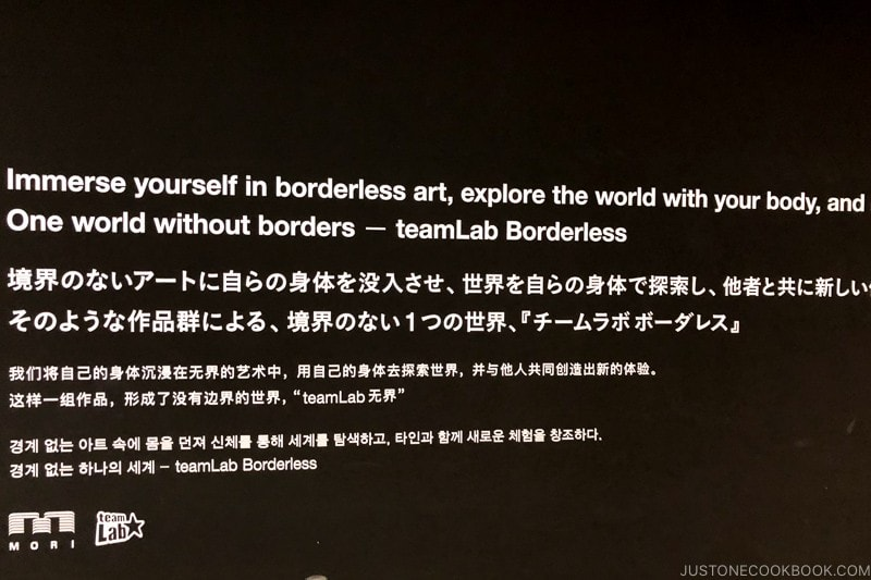 statement from teamLab Borderless at Mori Art Building - teamLab Borderless Odaiba Tokyo | www.justonecookbook.com