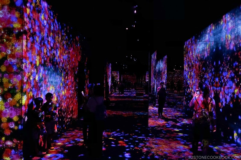 Forest of Flowers and People: Lost, Immersed and Reborn - teamLab Borderless Odaiba Tokyo | www.justonecookbook.com