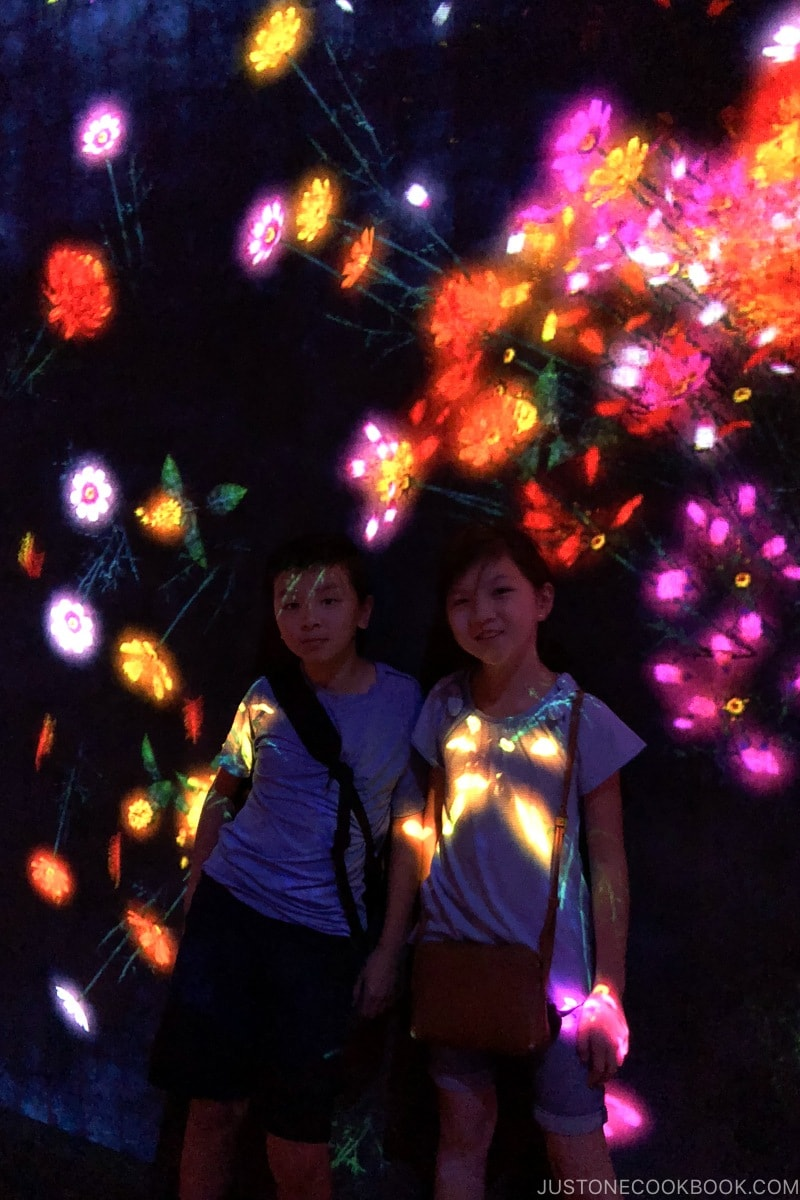 children standing with flower projections - teamLab Borderless Odaiba Tokyo | www.justonecookbook.com