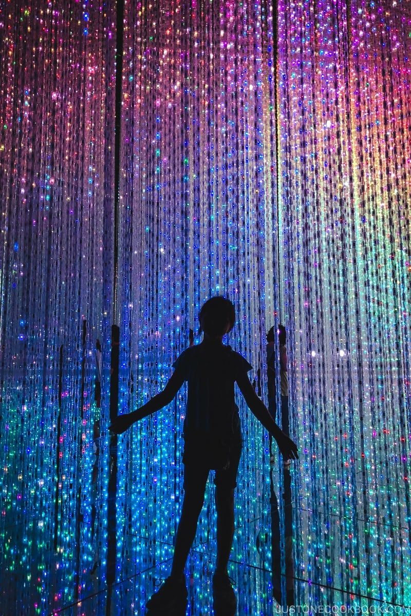 child in Crystal World - teamLab Borderless Odaiba Tokyo | www.justonecookbook.com