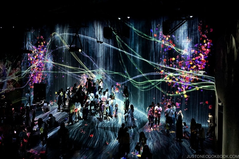 Universe of Water Particles on a Rock where People Gather - teamLab Borderless Odaiba Tokyo | www.justonecookbook.com