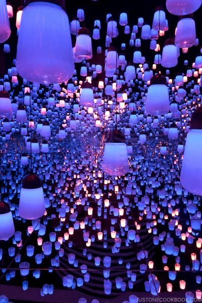 Forest of Lamps - teamLab Borderless Odaiba Tokyo | www.justonecookbook.com