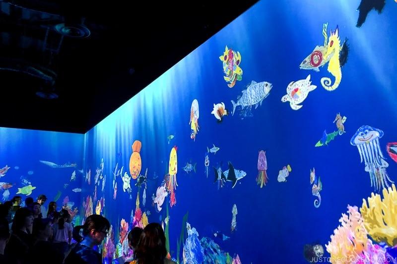 Sketch Aquarium - teamLab Borderless Odaiba Tokyo | www.justonecookbook.com
