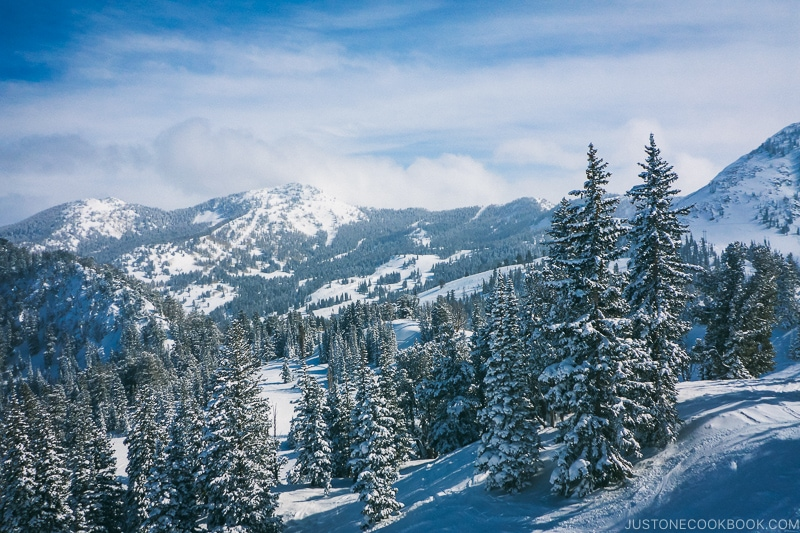 looking at Brighton from Solitude Mountain Resort - Ski Vacation Planning in Utah | www.justonecookbook.com