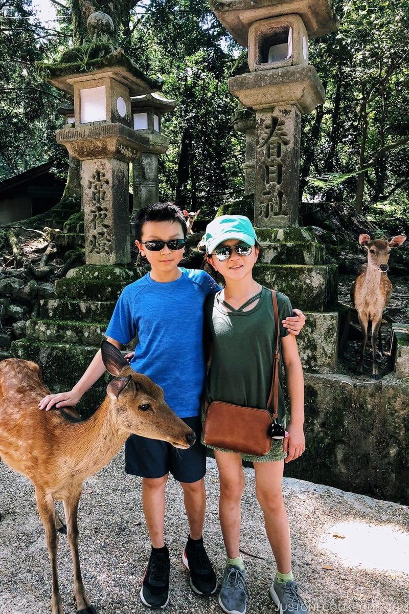 children with a deer | Nara Guide: Kasuga-taisha | www.justonecookbook.com