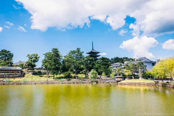 Sarusawa Pond - Nara Guide: Things to do in Nara | www.justonecookbook.com