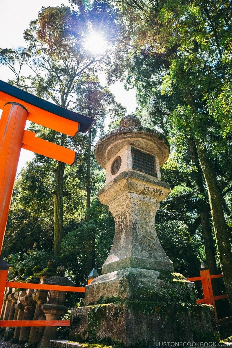 giant lanterns next to entrance gate at Kasuga-taisha | Nara Guide: Kasuga-taisha | www.justonecookbook.com