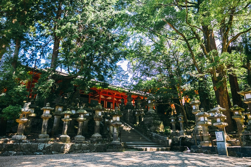 lanterns and trees next to the entrance | Nara Guide: Kasuga-taisha | www.justonecookbook.com