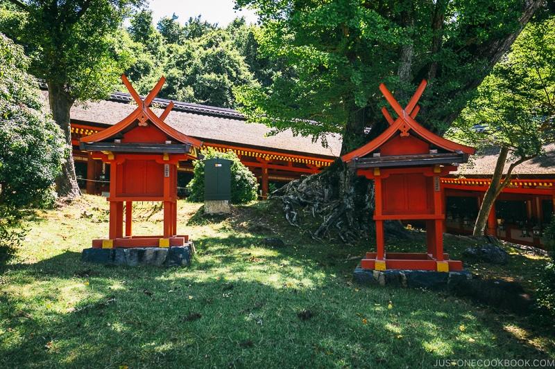 trees and shrines inside the courtyard - Nara Guide: Kasuga-taisha | www.justonecookbook.com