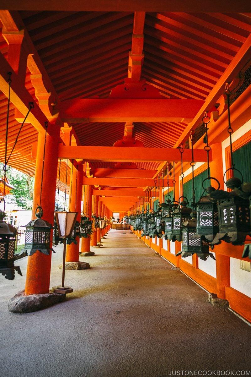 lanterns hanging in the hallway - Nara Guide: Kasuga-taisha | www.justonecookbook.com