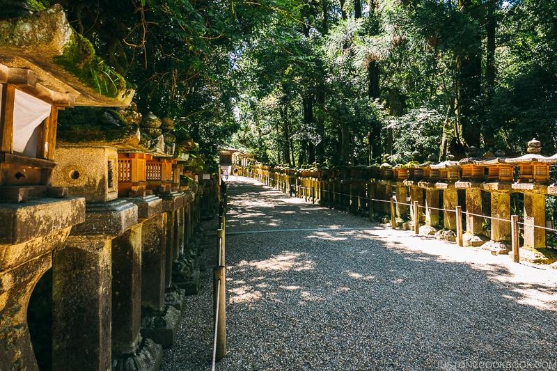 path lined with lantern to Wakamiya Shrine - Nara Guide: Kasuga-taisha | www.justonecookbook.com