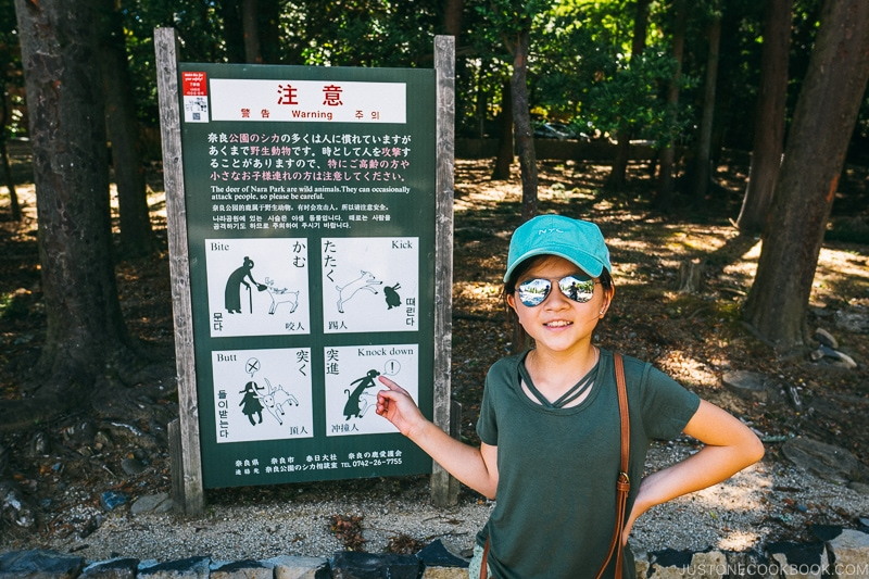 child next to warning signs for deers - Nara Guide: Kasuga-taisha | www.justonecookbook.com