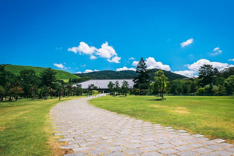 pathway to Nara Kasugano International Forum at Nara Park - Nara Guide: Things to do in Nara | www.justonecookbook.com